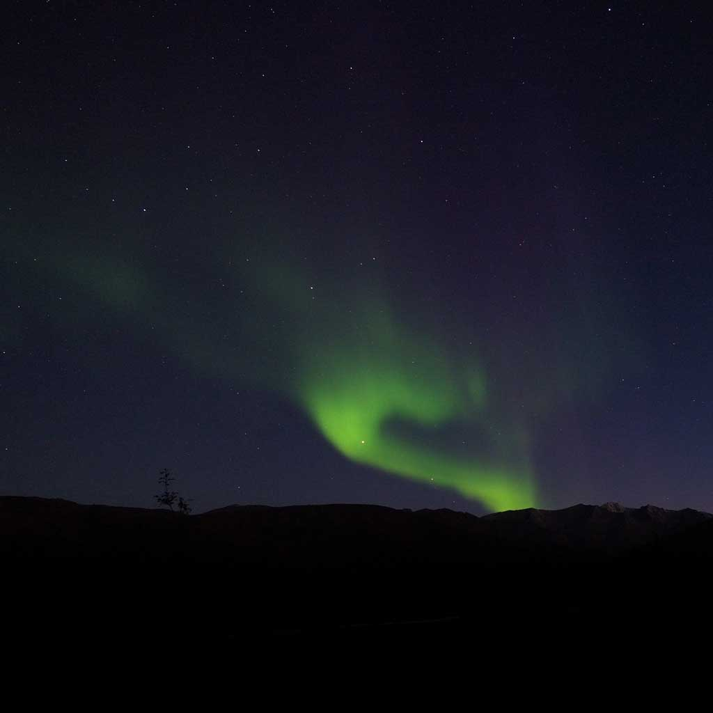 the_nothern_lights_near_coldfoot