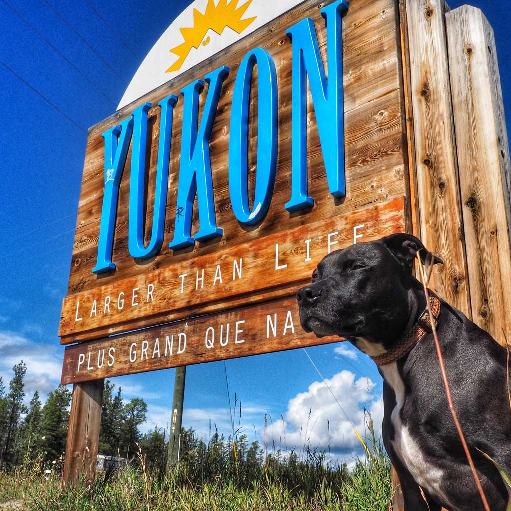 we_made_it_to_the_yukon